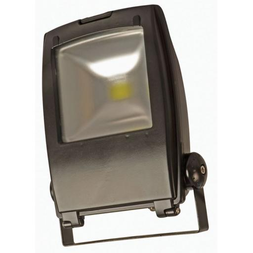 30w LED Floodlight With Photocell